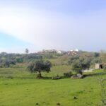 Visita de las obras Hinojales. Huelva
